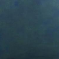 Savage Alpine Canvas Hintergrund 1.52 x 2.13m