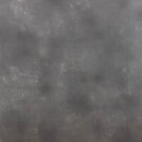 Savage Ash Canvas Hintergrund 1.52 x 2.13m