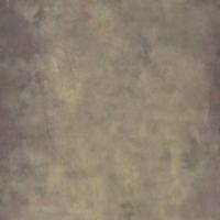 Savage Desert Canvas Hintergrund 2.44 x 3.66m