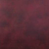 Savage Scarlet Canvas Hintergrund 1.52 x 2.13m